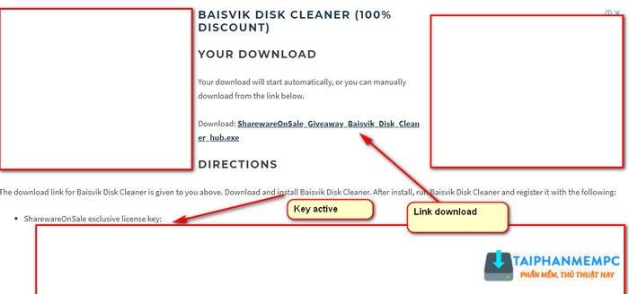 baisvik disk cleaner 4